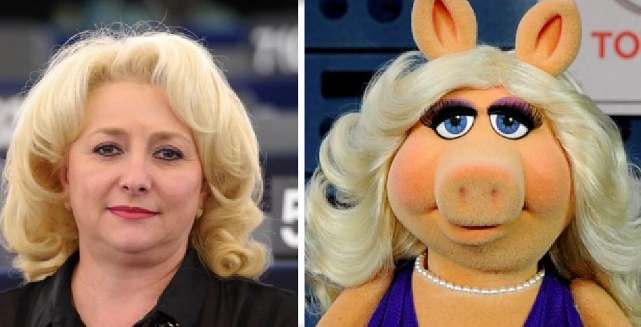 Ce nesimțit și CTP! Distinsa doamnă Dăncilă chiar nu seamănă cu un pavian. Seamănă cu Miss Piggy!