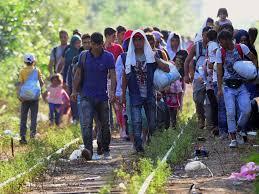 Să dai câteva mii de euro ca să ajungi în Germania și să fii repartizat în România - asta înseamnă să ai ghinion!