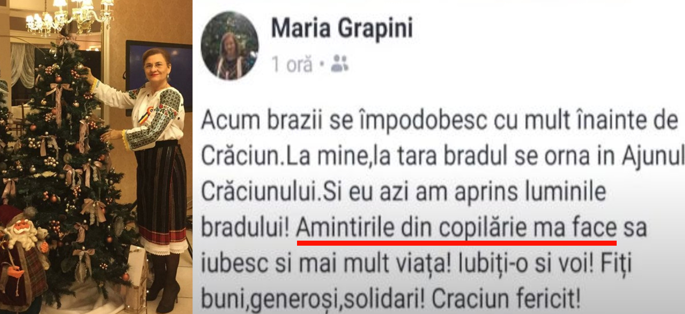 Maria Grapini a împodobit gramatica cu dezacorduri!