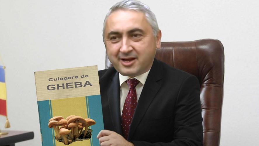 Ministrul Pamblică a scos o culegere de Gheba pentru culegătorii de ciuperci!