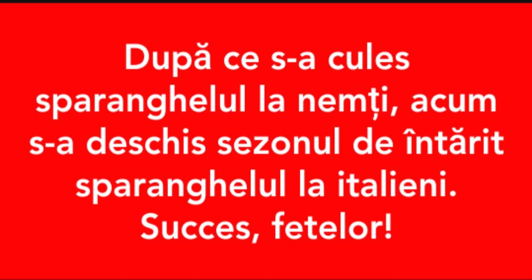 #succes fetelor