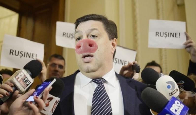 Ca să se scape pe el, Șerban Nicolae încearcă să treacă o lege ce interzice tăierea porcilor de Ignat!