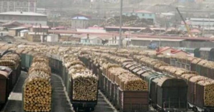 Singurele trenuri din România care nu au întârzieri!