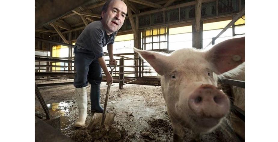 Dacă nu va reuși să o demită pe Codruța, Tudorel va fi trimis la muncă la ferma de porci a lui Dragnea!